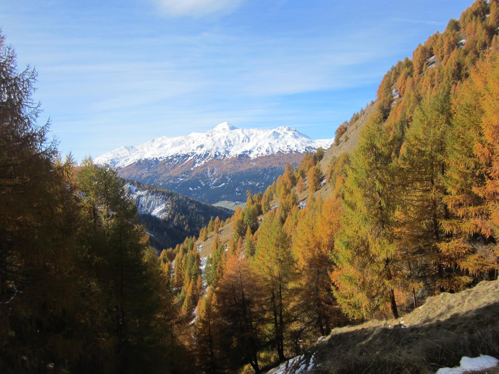 Wanderung Grauner Berg Suedtirol IMG_5841